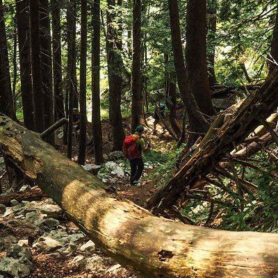 trekking-guidati-dolomiti-nativetracks02
